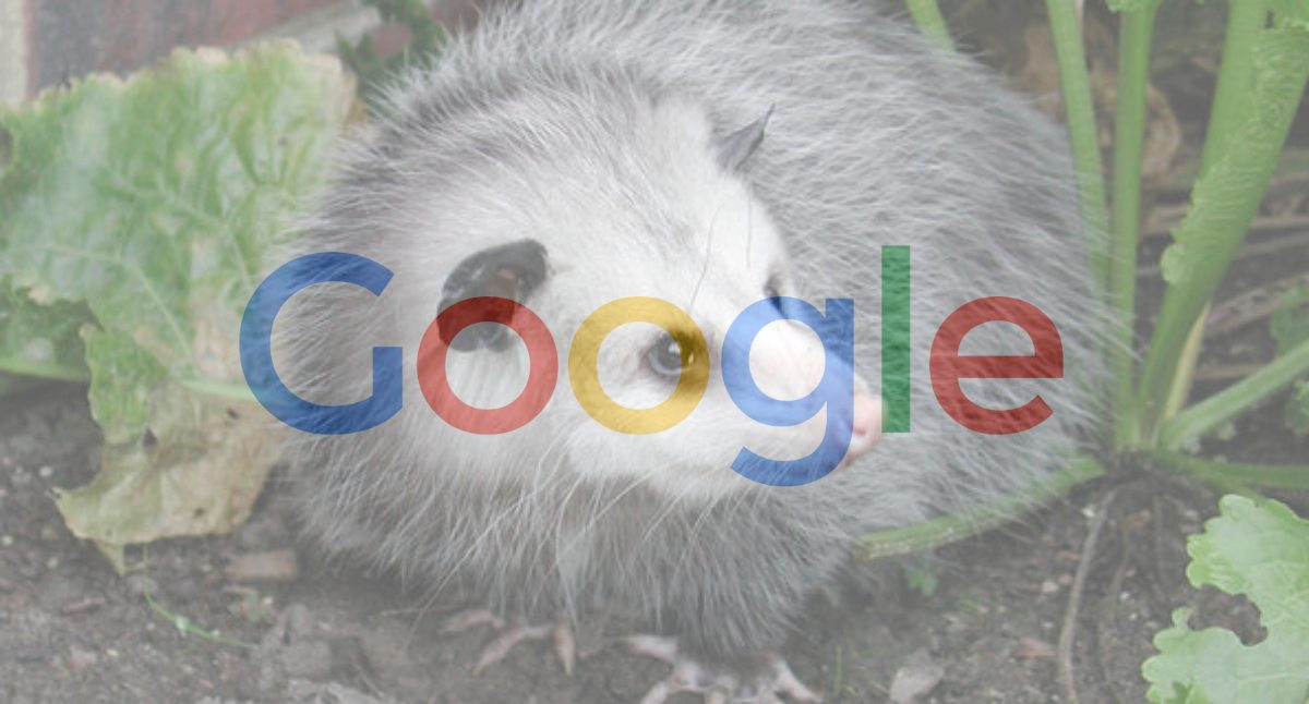 Google-Possum-Update
