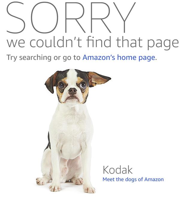 amazon 404