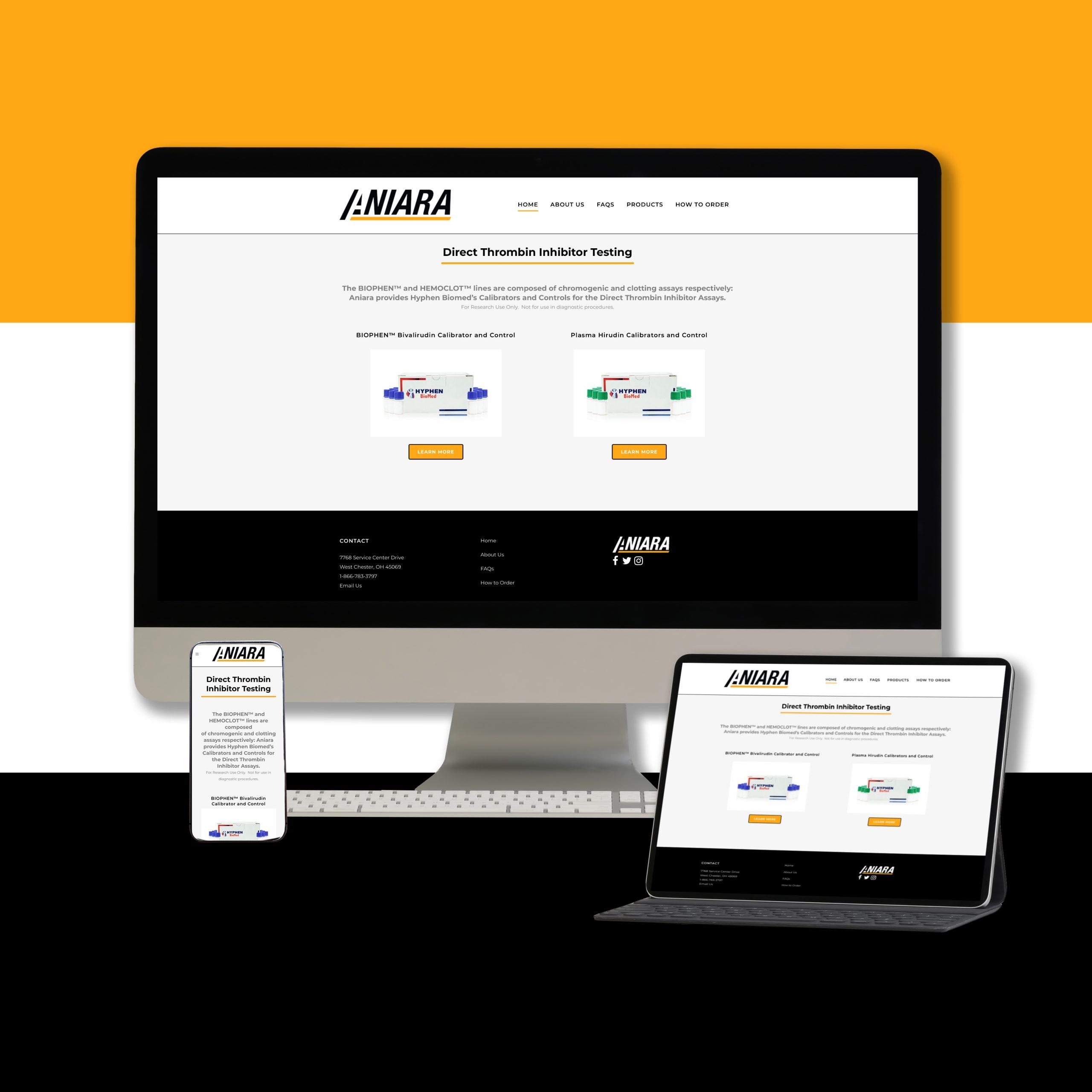 Aniara Website Portfolio Page