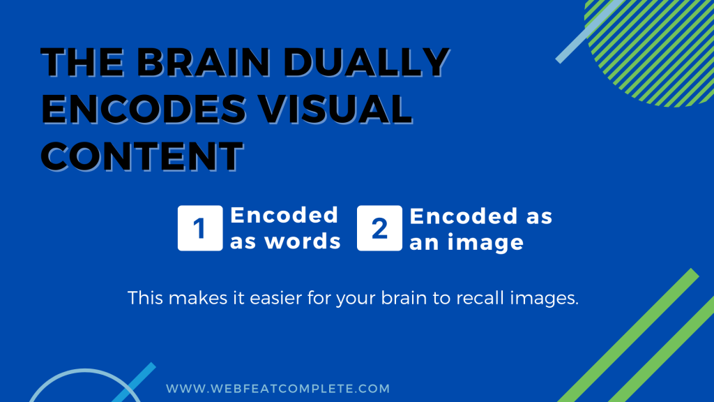 The brain dually encodes visual content- once as words and again as an image.